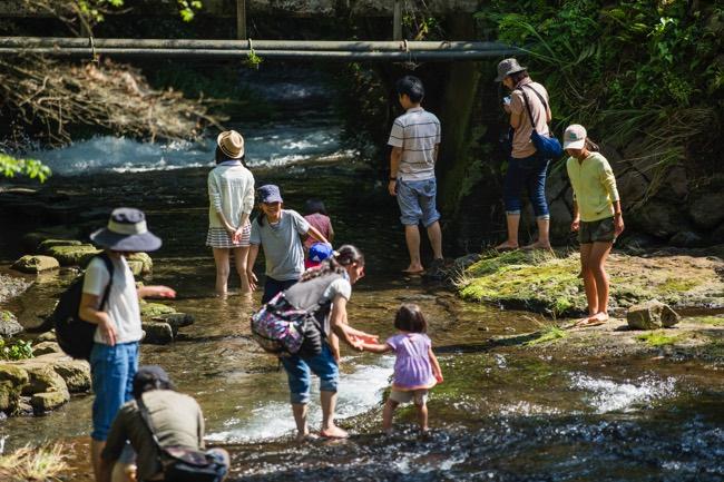 熊本 川遊び