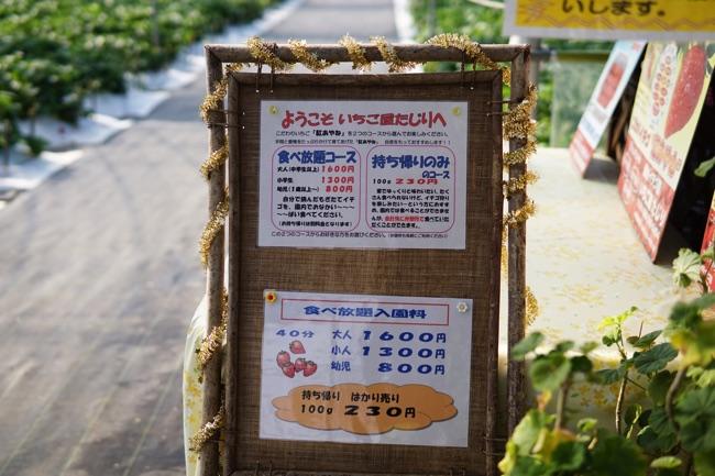 たじり いちご 熊本