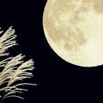 【食欲の秋】みんな大好き秋の味覚と9月のイベント情...