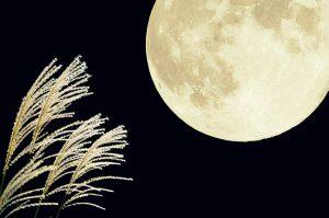 【食欲の秋】みんな大好き秋の味覚と9月のイベント情報