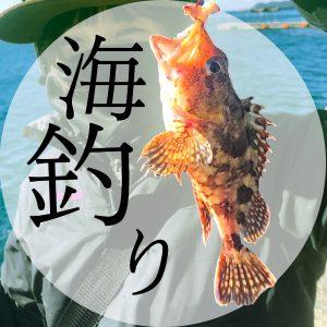 釣りって楽しい!あこの釣果報告!🐟
