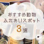 秋はかわいい動物に癒されたい!熊本県内のおすすめ動...