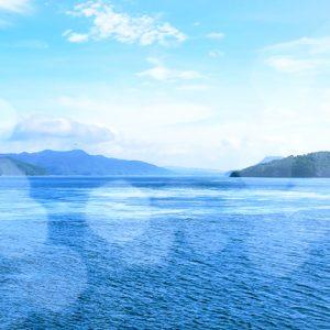天草日帰り旅行!自虐CMで話題の海中水族館シードーナツに行ってみた!