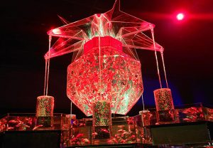 豪華絢爛な金魚の世界にうっとり♪アートアクアリウム展へ行ってきました!