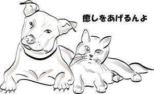 【最近お疲れのあなたに】動物から癒しを貰おう