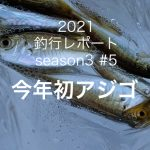 【やなの釣行レポート season3#5 】今年初...